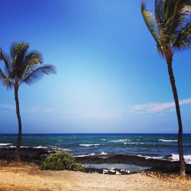 Beach Walk along the Kohala Coast